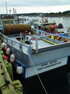Murray Harbor, New Brunswick lobster boats rigged for mackerel fishery. Photo by Annie Tselikis.