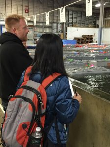 Washington Post reporter Ylan Mui and John Leavitt, Ready Seafood, view the company's lobster holding tanks. MLMC photo.